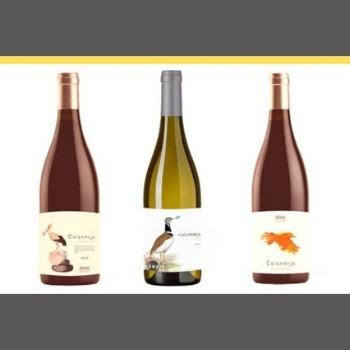 Pack de vinos Calandria Bodegas Belote