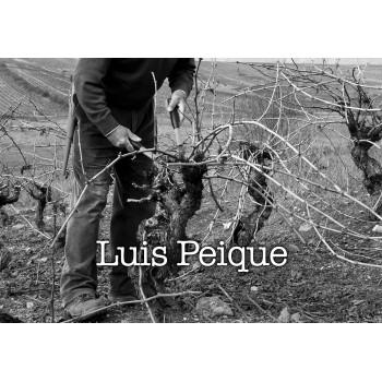 Luis Peique