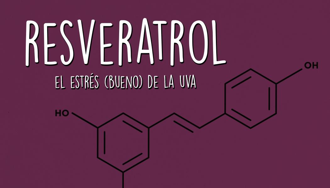 Resveratrol, el estrés (bueno) de la uva