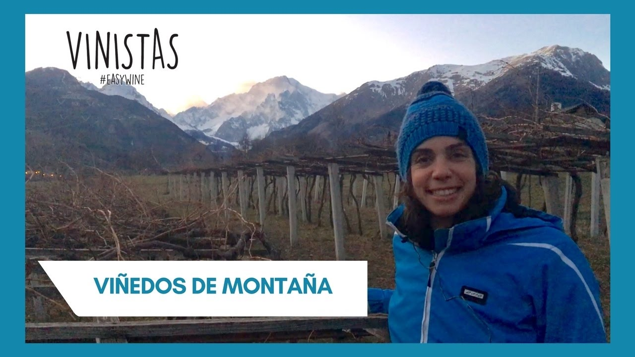 Viñedos de montaña – VINISTAS TV – Episodio 53