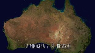 La Filoxera 2: el regreso