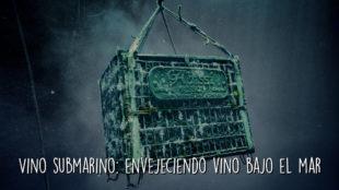 Vino submarino: envejeciendo vino bajo el mar