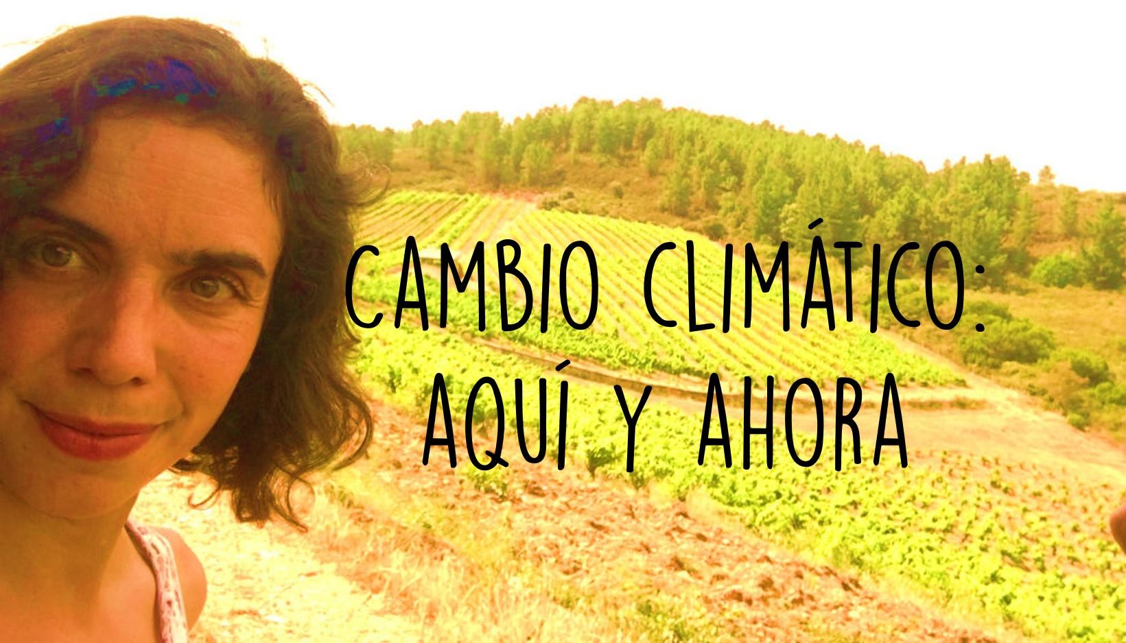 Cambio climático y vino: Aquí y ahora