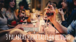 3 palabras esenciales en el vino