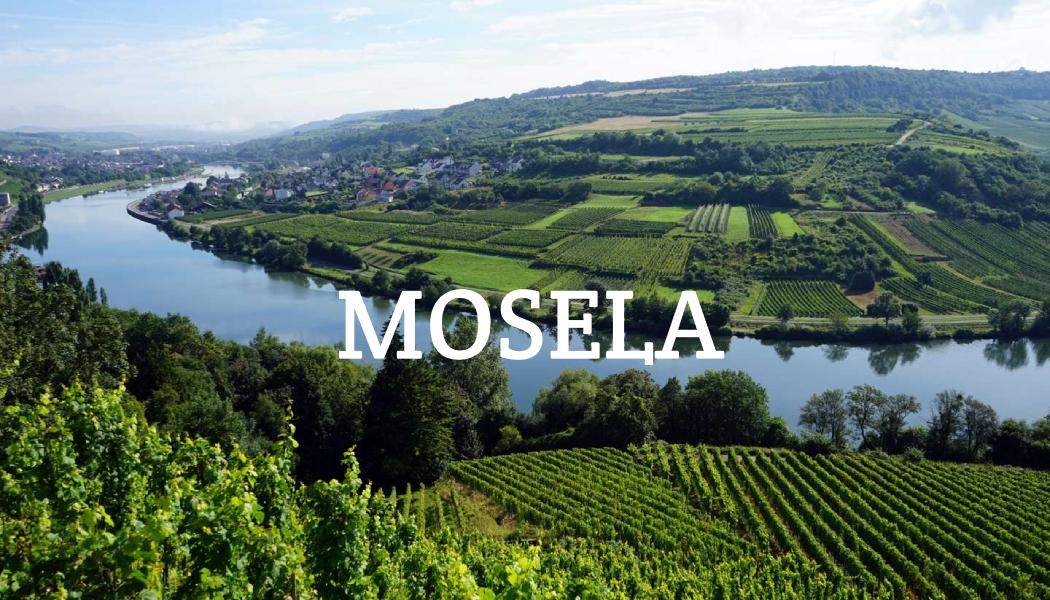 Vinos de Mosela: Vinos Alemanes para Disfrutar
