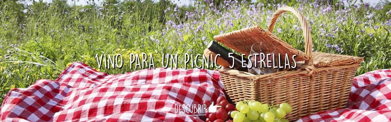 Vinos para un picnic 5 estrellas